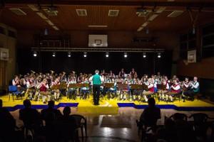 gesamte Orchester